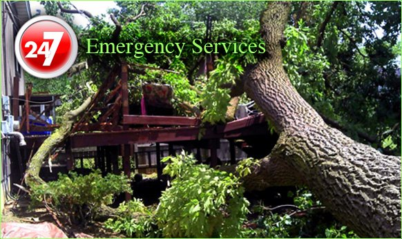 emergency services picture