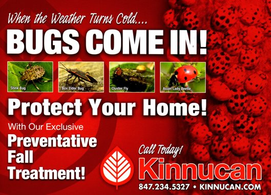 Kinnucan's pest control service advertisement, protect your home.